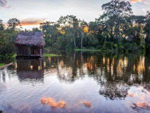 Alto Amazonas, las fuentes de la selva