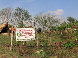Permacultura en Cuba: una oportunidad ante la escasez forzada